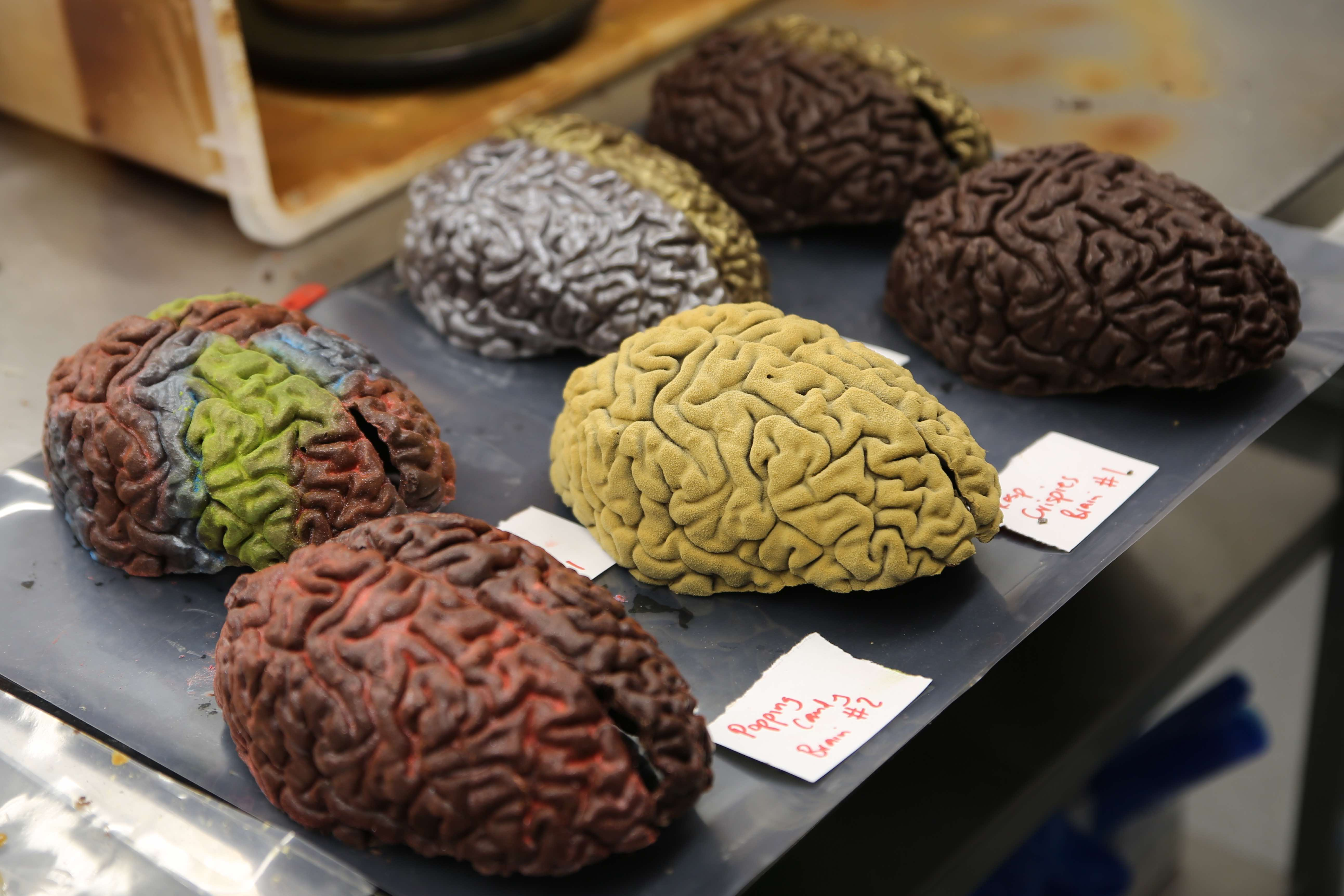 Jake Fairnie's chocolate brains