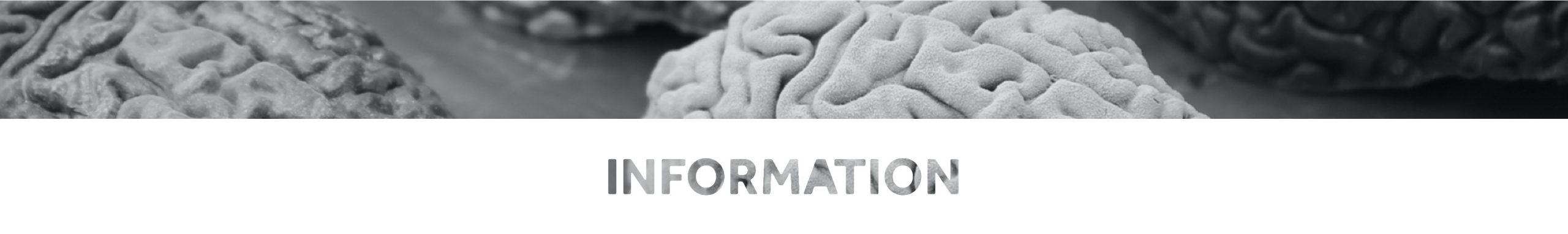 Information   Science   Brain